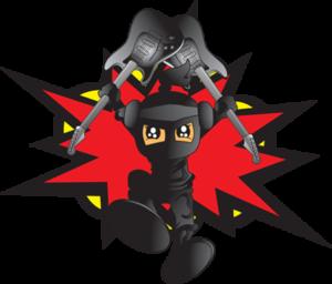 Rock Dojo Ninja