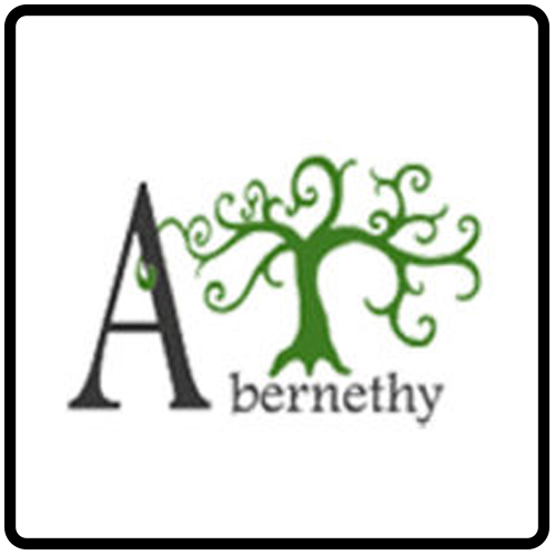 Abernethy Elementary Guitar Lessons_02